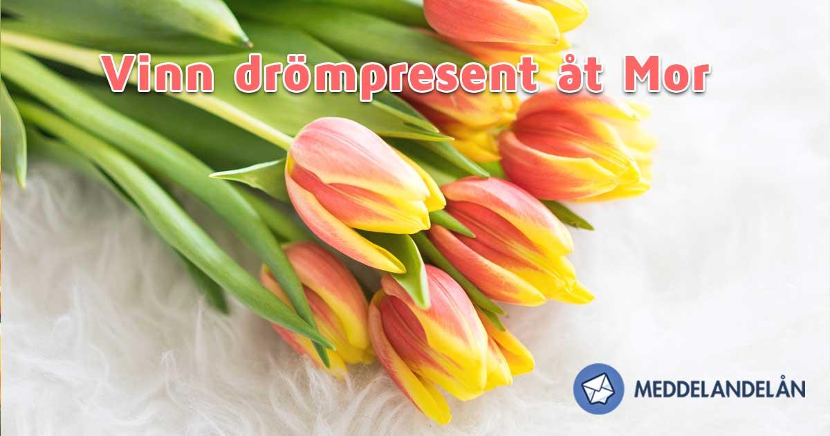 Meddelandelån drömpresent mors Dag